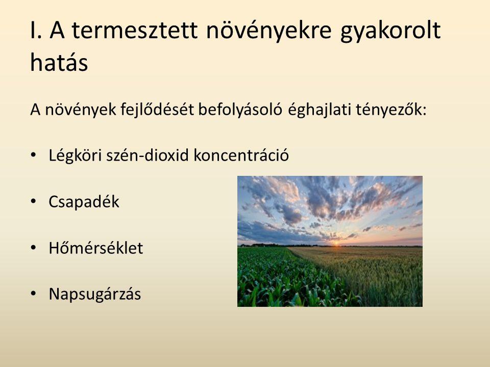 I. A termesztett növényekre gyakorolt hatás A növények fejlődését befolyásoló éghajlati tényezők: Légköri szén-dioxid koncentráció Csapadék Hőmérsékle