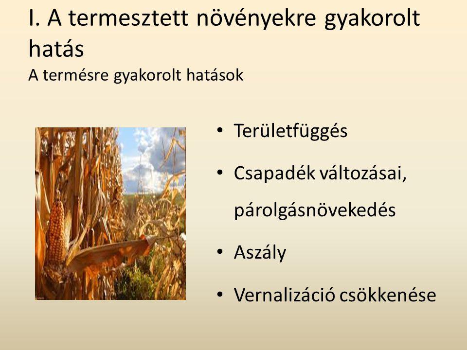 I. A termesztett növényekre gyakorolt hatás A termésre gyakorolt hatások Területfüggés Csapadék változásai, párolgásnövekedés Aszály Vernalizáció csök