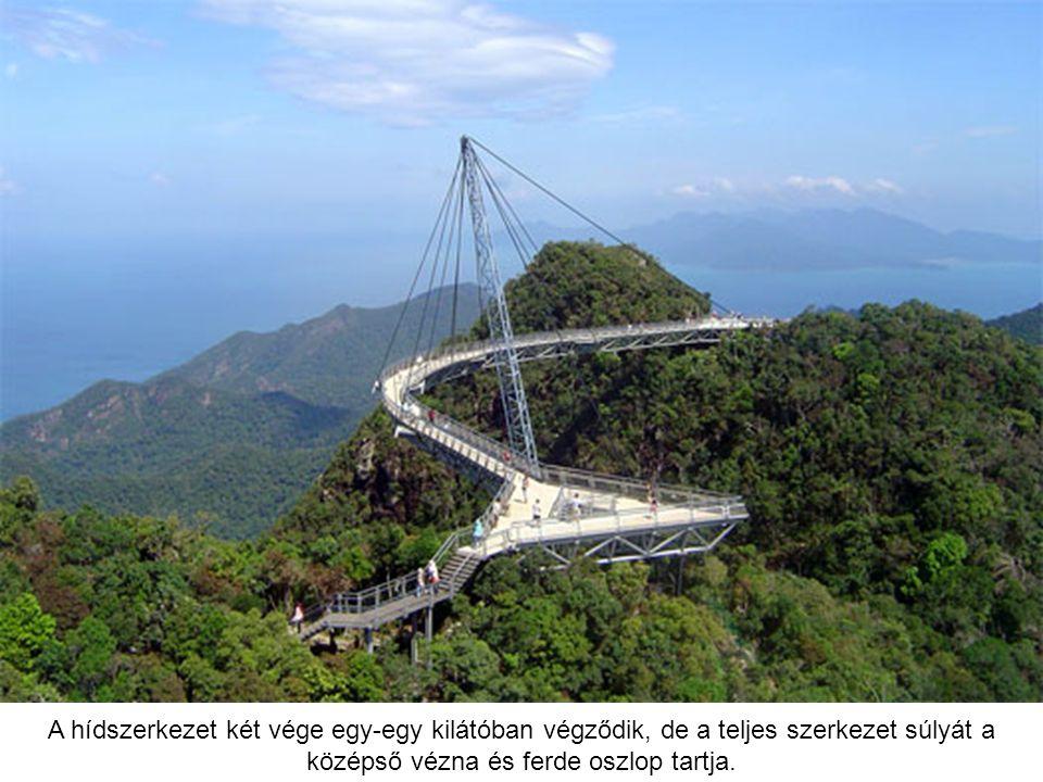 A hídszerkezet két vége egy-egy kilátóban végződik, de a teljes szerkezet súlyát a középső vézna és ferde oszlop tartja.
