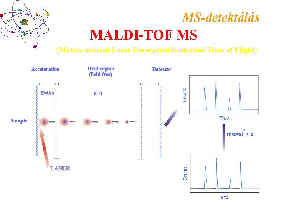Laser + + - - + + + + Time C o u n t s m/z C o u n t s Ion-source Flight tube (field-free) MALDI-TOF MS instrument +