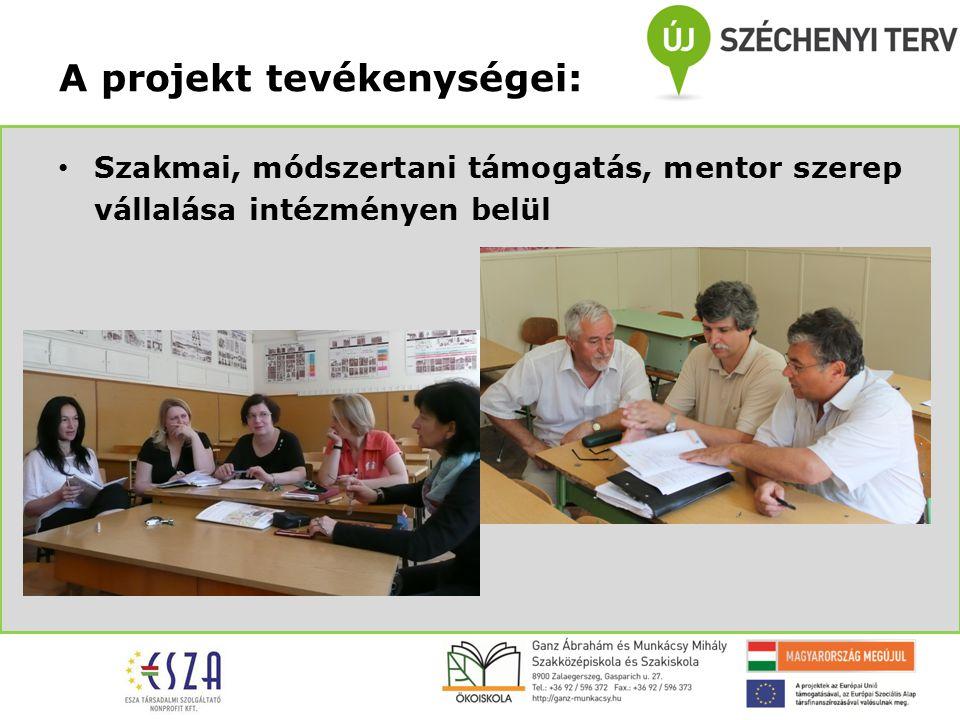 Szakmai, módszertani támogatás, mentor szerep vállalása intézményen belül A projekt tevékenységei: