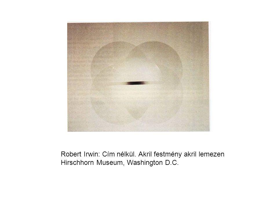 Robert Irwin: Cím nélkül. Akril festmény akril lemezen Hirschhorn Museum, Washington D.C.