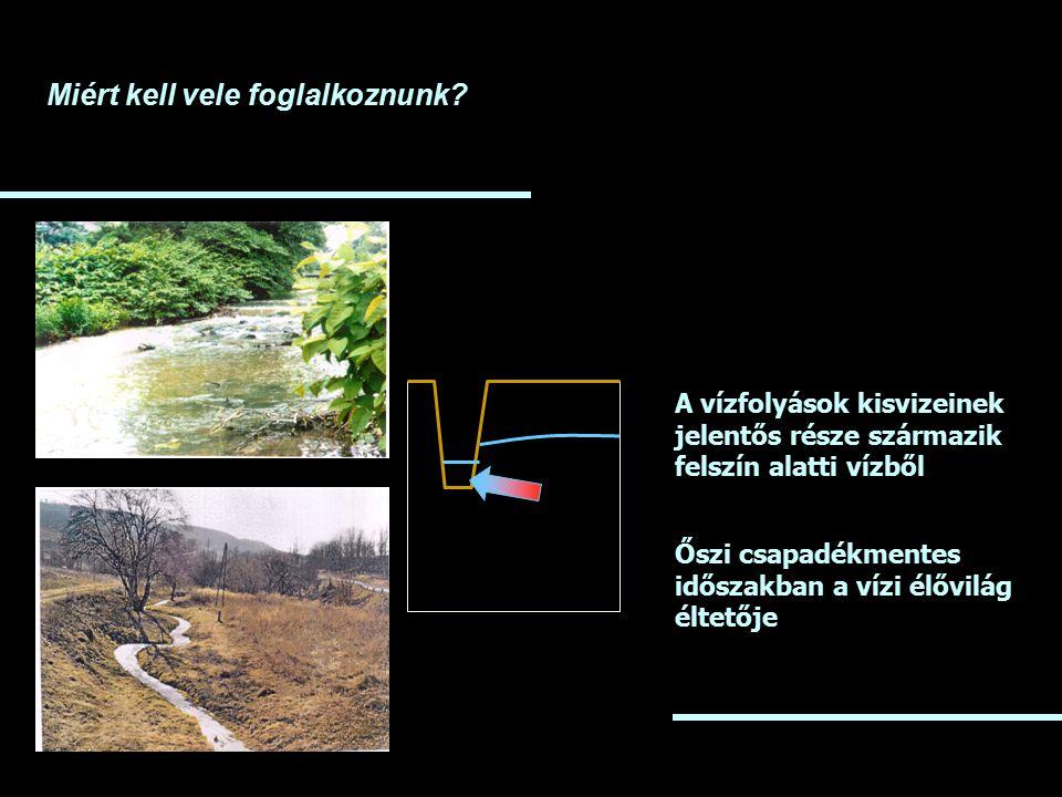 Miért kell vele foglalkoznunk? A vízfolyások kisvizeinek jelentős része származik felszín alatti vízből Őszi csapadékmentes időszakban a vízi élővilág