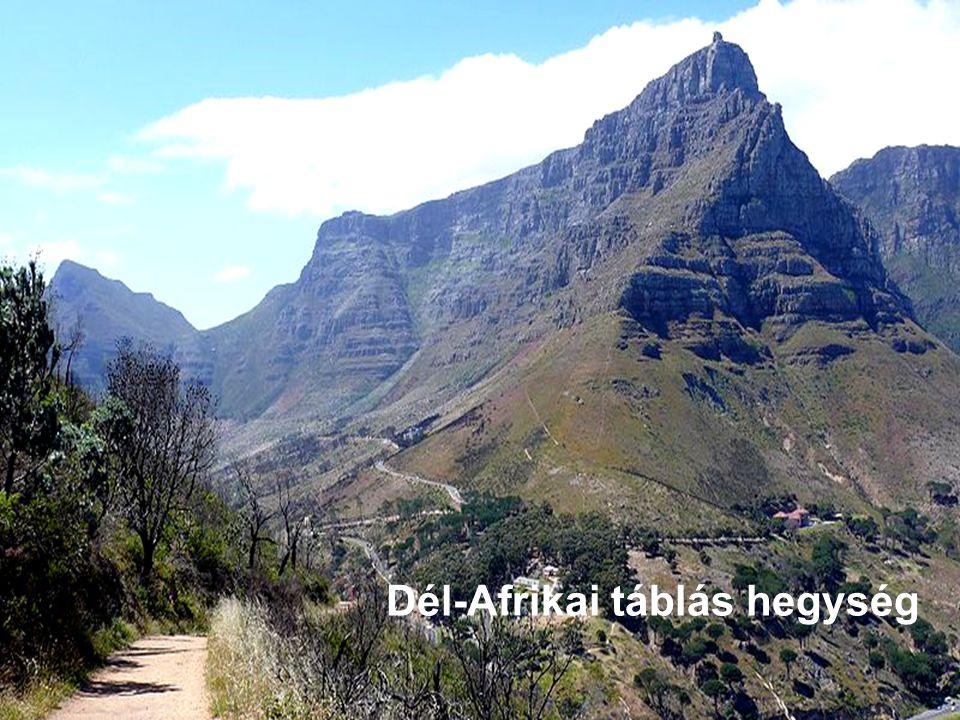 Dél Afrikai táblás hegység