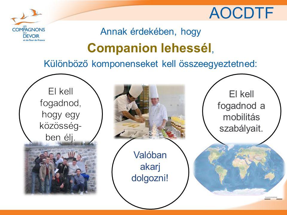 AOCDTF Annak érdekében, hogy Companion lehessél, Különböző komponenseket kell összeegyeztetned: Valóban akarj dolgozni! El kell fogadnod a mobilitás s