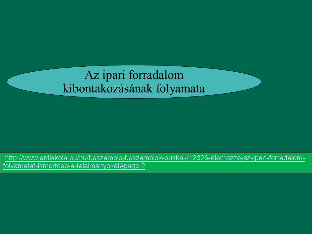 Az ipari forradalom kibontakozásának folyamata http://www.antiskola.eu/hu/beszamolo-beszamolok-puskak/12326-elemezze-az-ipari-forradalom- folyamatat-i