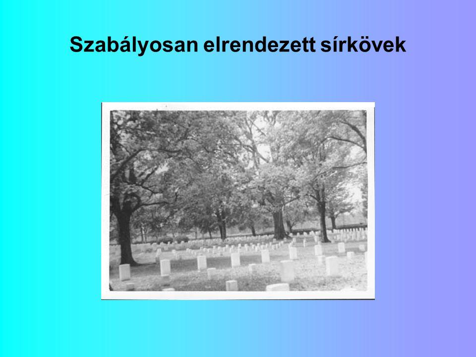 Szabályosan elrendezett sírkövek