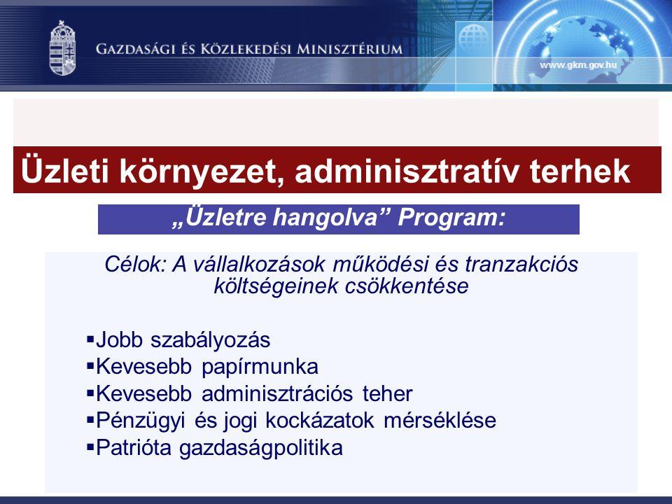 """""""Üzletre hangolva Program: Célok: A vállalkozások működési és tranzakciós költségeinek csökkentése  Jobb szabályozás  Kevesebb papírmunka  Kevesebb adminisztrációs teher  Pénzügyi és jogi kockázatok mérséklése  Patrióta gazdaságpolitika Üzleti környezet, adminisztratív terhek"""
