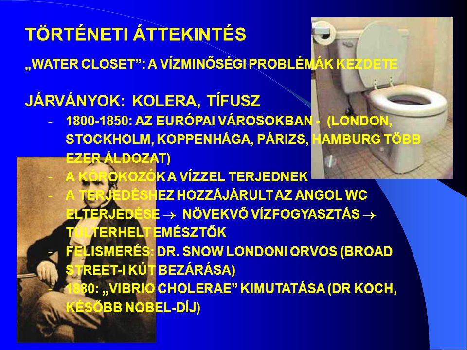 JÁRVÁNYOK: KOLERA, TÍFUSZ -1800-1850: AZ EURÓPAI VÁROSOKBAN - (LONDON, STOCKHOLM, KOPPENHÁGA, PÁRIZS, HAMBURG TÖBB EZER ÁLDOZAT) -A KÓROKOZÓK A VÍZZEL