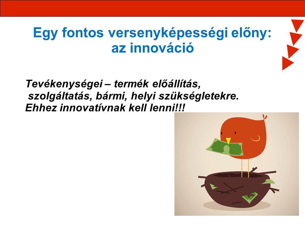 Egy fontos versenyképességi előny: az innováció Tevékenységei – termék előállítás, szolgáltatás, bármi, helyi szükségletekre. Ehhez innovatívnak kell