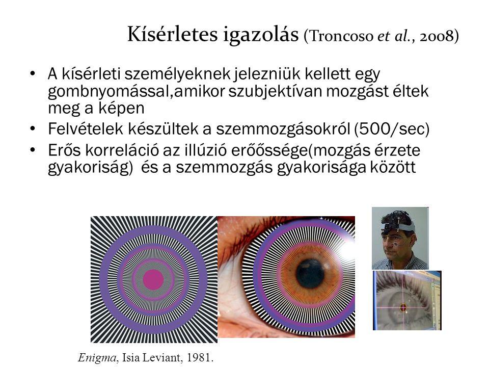 Kísérletes igazolás (Troncoso et al., 2008) A kísérleti személyeknek jelezniük kellett egy gombnyomással,amikor szubjektívan mozgást éltek meg a képen
