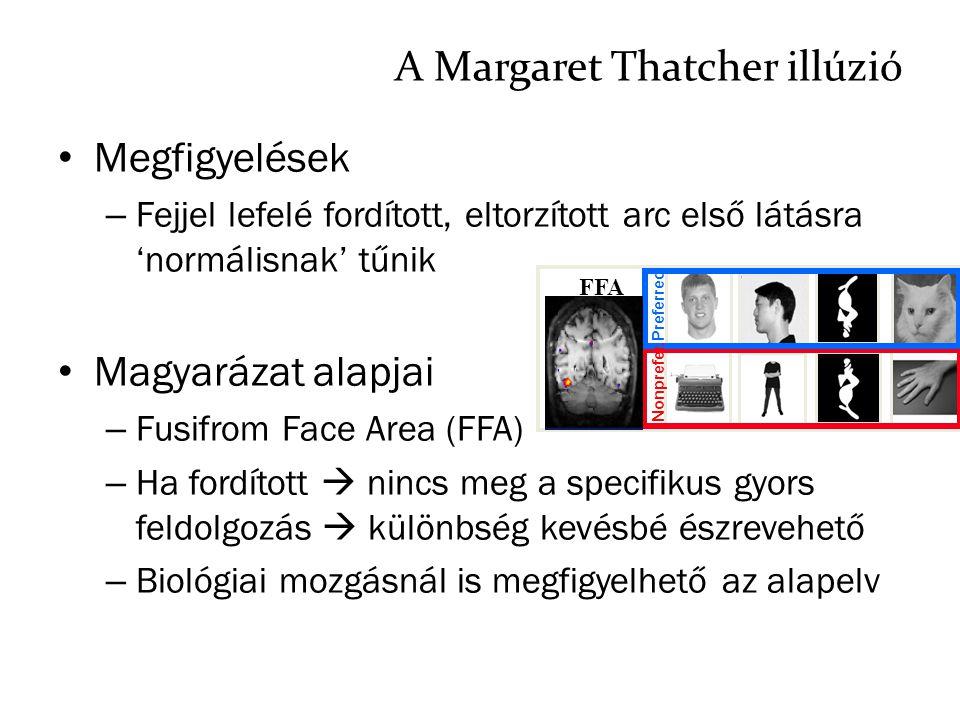 A Margaret Thatcher illúzió Megfigyelések – Fejjel lefelé fordított, eltorzított arc első látásra 'normálisnak' tűnik Magyarázat alapjai – Fusifrom Fa
