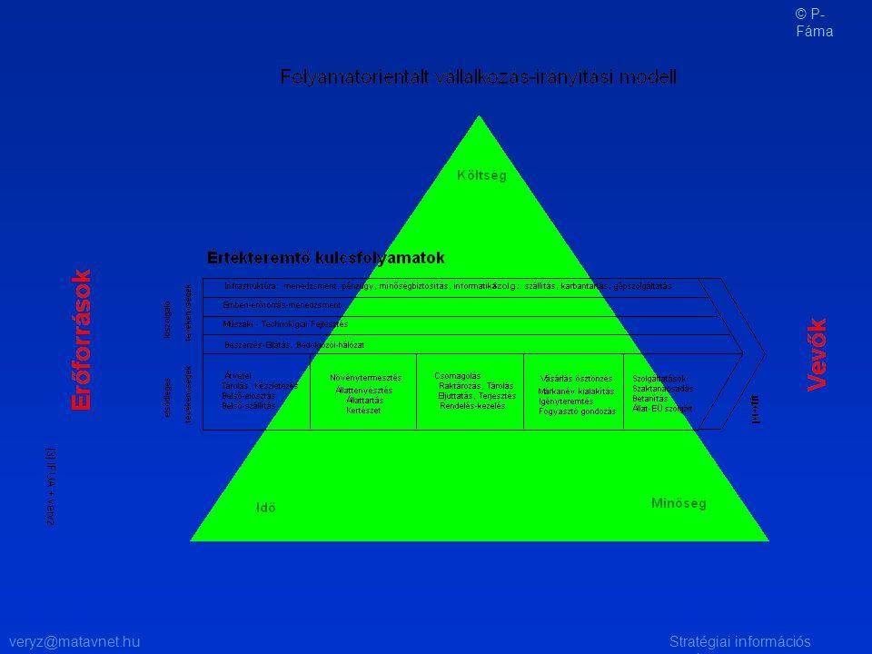 veryz@matavnet.huStratégiai információs rendszer © P- Fáma
