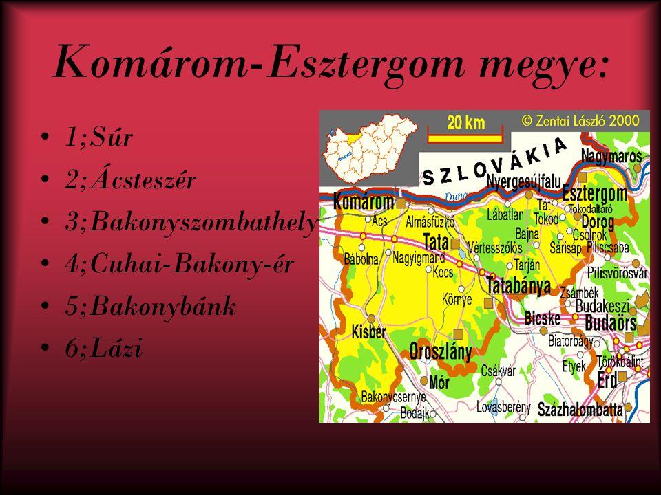 Veszprém megye 1;Gic 2;Bakonytamási 3;Pápateszér 4;Csót 5;Nagygyimót 6;Pápa 7;Dáka 8;Nagyalásony 9;Vid 10;Iszkáz 11;Kerta