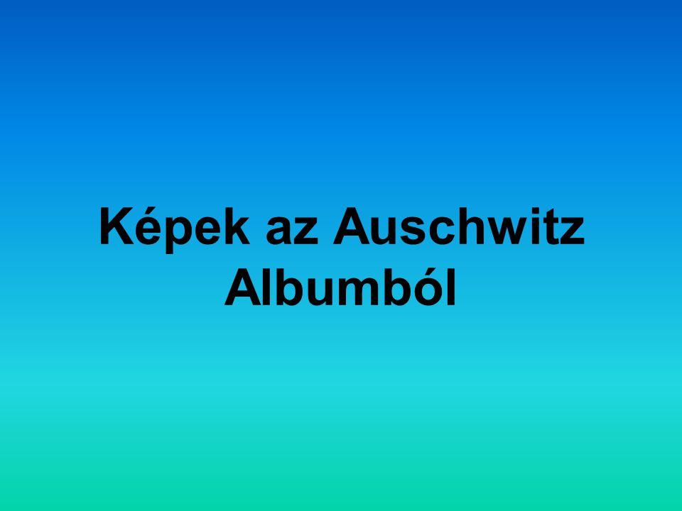 Képek az Auschwitz Albumból