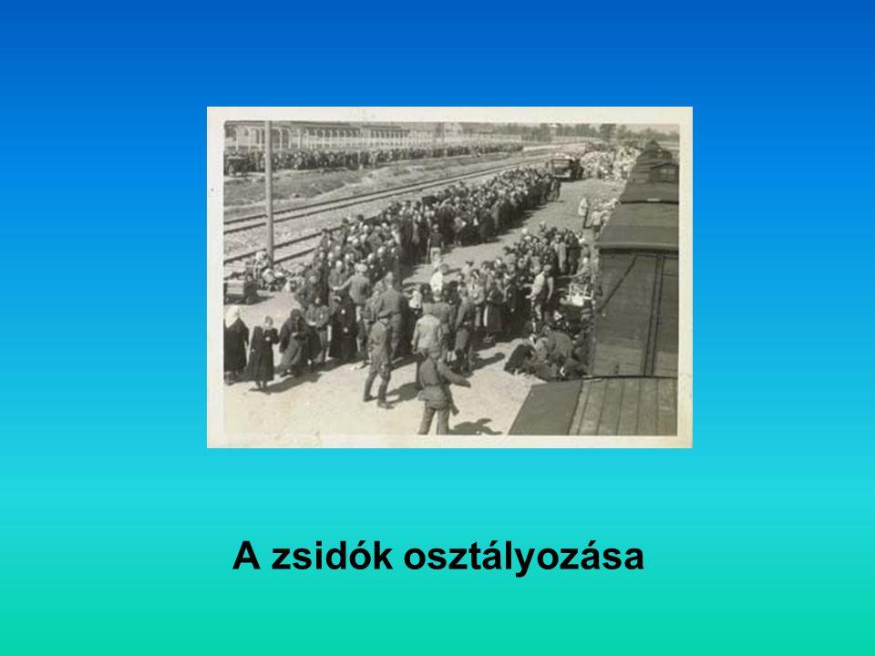 A zsidók osztályozása