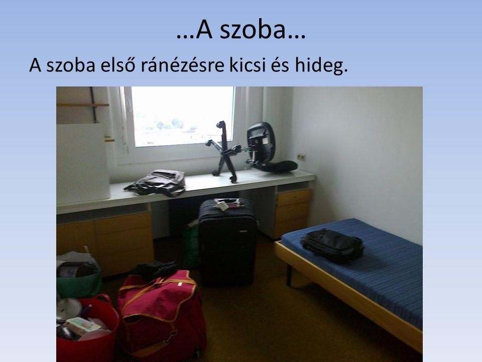…A szoba… A szoba első ránézésre kicsi és hideg.