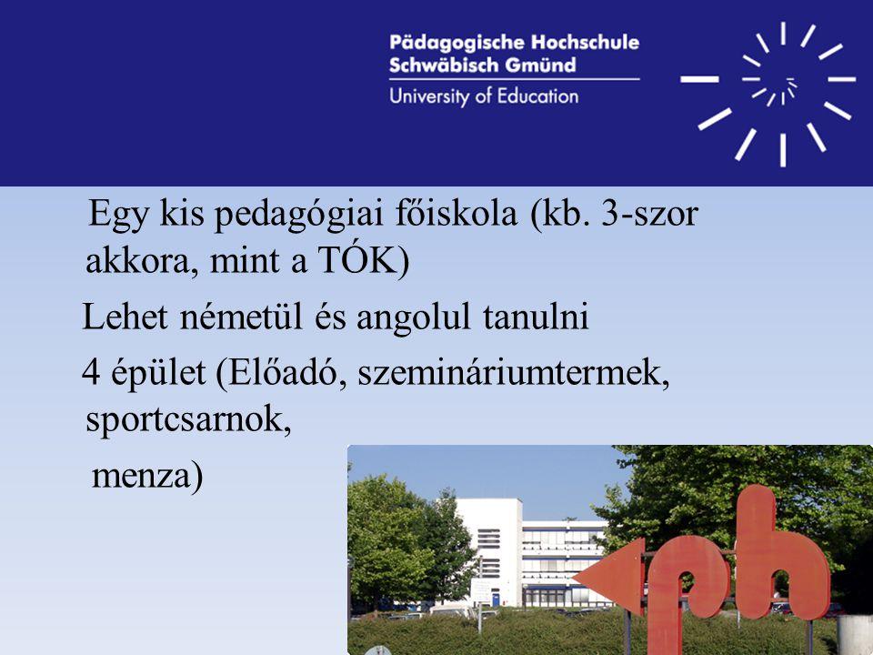 Egy kis pedagógiai főiskola (kb.