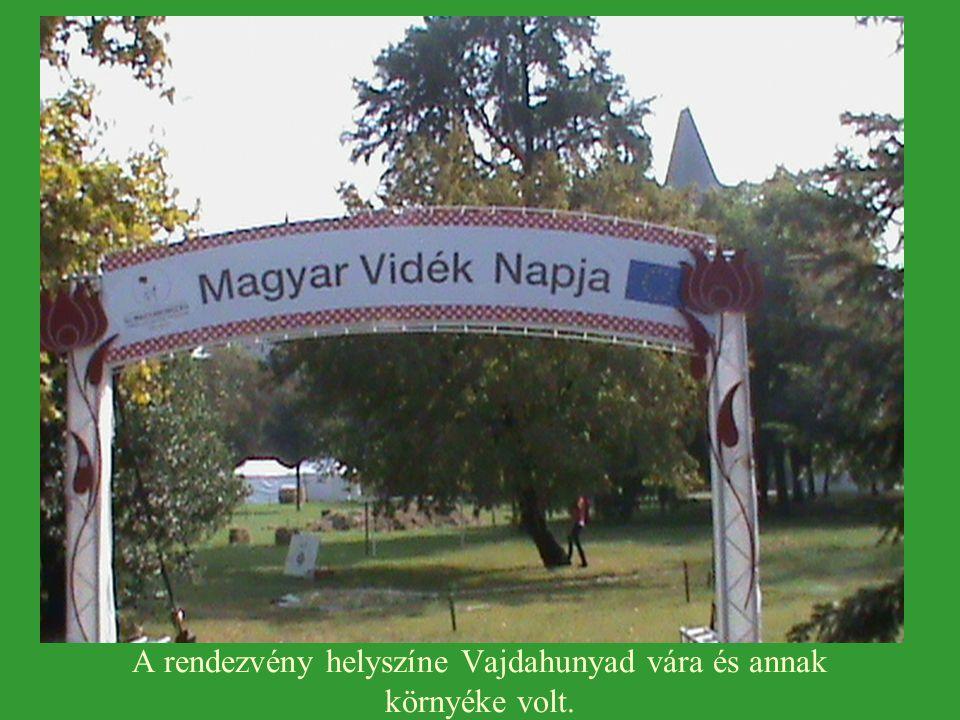 A rendezvény helyszíne Vajdahunyad vára és annak környéke volt.