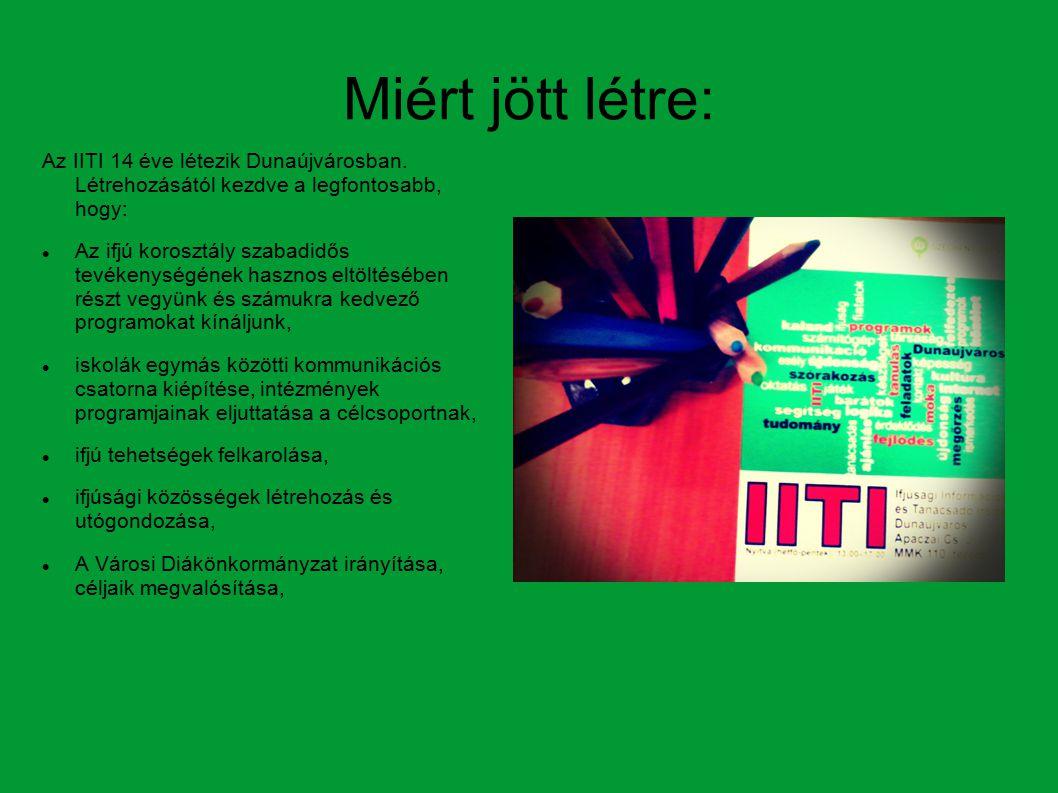 Miért jött létre: Az IITI 14 éve létezik Dunaújvárosban.