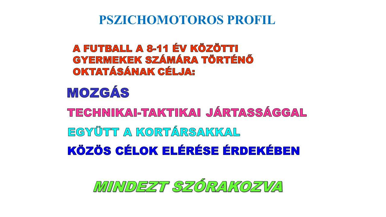 PSZICHOMOTOROS PROFIL