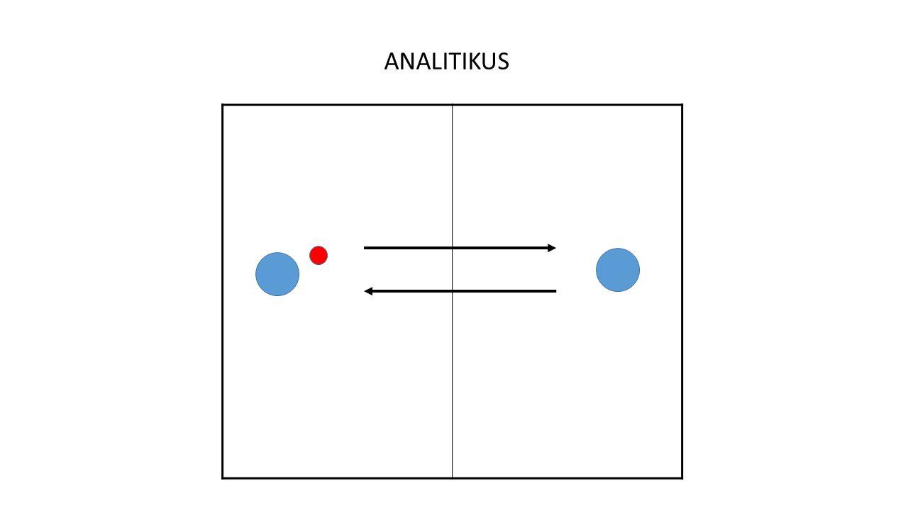 ANALITIKUS