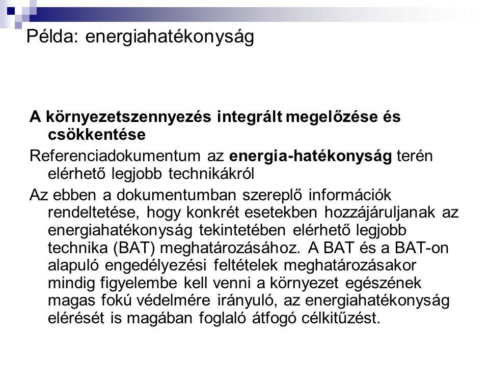 Példa: energiahatékonyság A környezetszennyezés integrált megelőzése és csökkentése Referenciadokumentum az energia-hatékonyság terén elérhető legjobb technikákról Az ebben a dokumentumban szereplő információk rendeltetése, hogy konkrét esetekben hozzájáruljanak az energiahatékonyság tekintetében elérhető legjobb technika (BAT) meghatározásához.