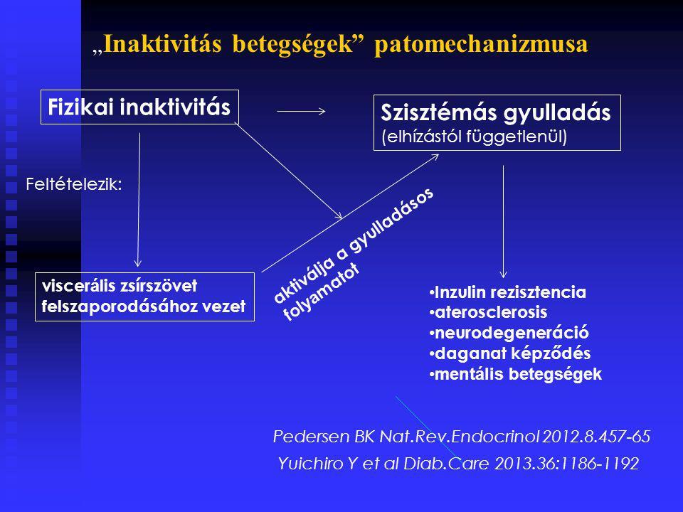 """Fizikai inaktivitás Szisztémás gyulladás (elhízástól függetlenül) Feltételezik: viscer á lis zsírszövet felszaporodásához vezet aktiválja a gyulladásos fol ya matot Inzulin rezisztencia aterosclerosis neurodegeneráció daganat képződés mentális betegségek Pedersen BK Nat.Rev.Endocrinol 2012.8.457-65 Yuichiro Y et al Diab.Care 2013.36:1186-1192 """" Inaktivitás betegségek patomechanizmusa"""