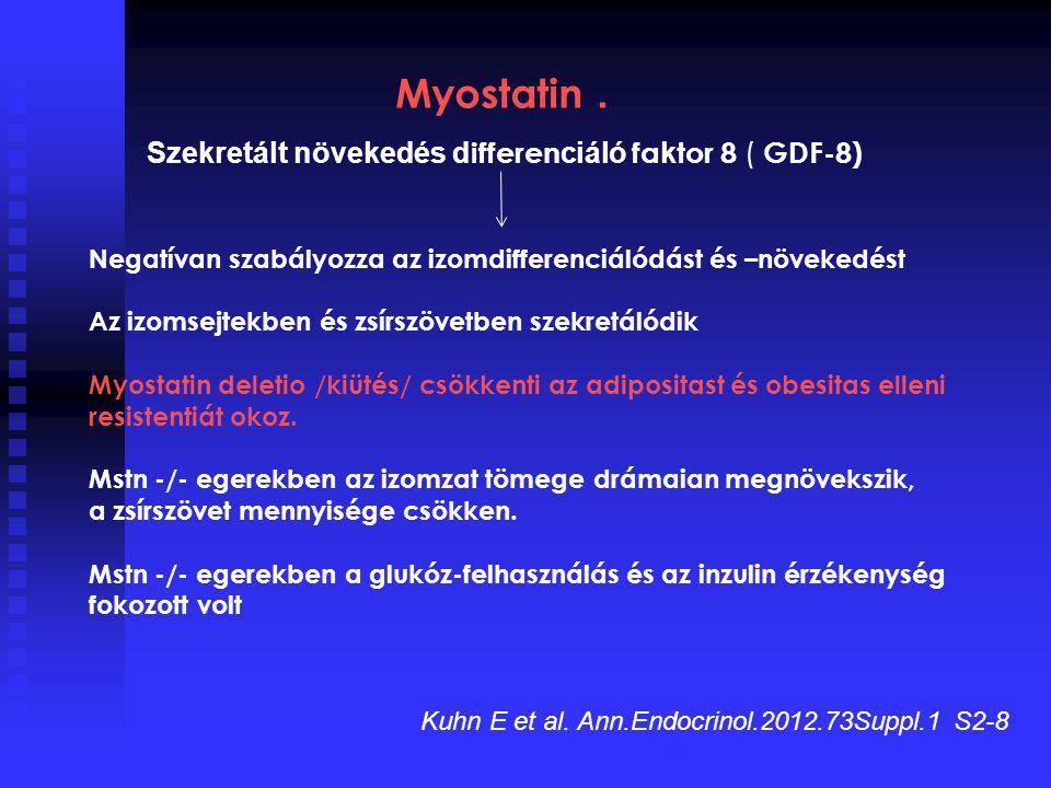 Myostatin. Szekretált növekedés d ifferen ciáló fa k tor 8 ( GDF-8) Negatívan szabályozza az izomdifferenciálódást és –növekedést Az izomsejtekben és