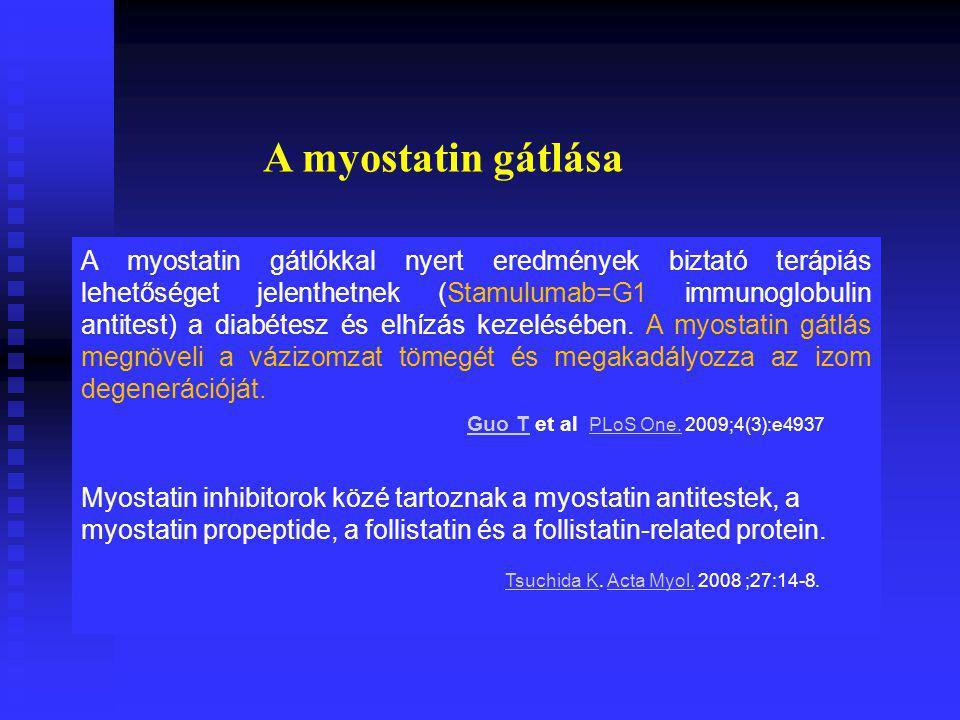 A myostatin gátlókkal nyert eredmények biztató terápiás lehetőséget jelenthetnek (Stamulumab=G1 immunoglobulin antitest) a diabétesz és elhízás kezelésében.