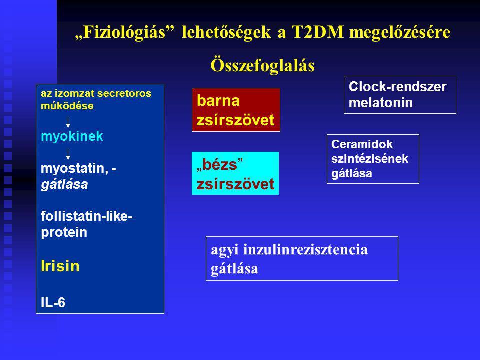 """az izomzat secretoros múködése myokinek myostatin, - gátlása follistatin-like- protein Irisin IL-6 barna zsírszövet """"bézs zsírszövet Clock-rendszer melatonin Ceramidok szintézisének gátlása agyi inzulinrezisztencia gátlása """" Fiziológiás lehetőségek a T2DM megelőzésére Összefoglalás"""