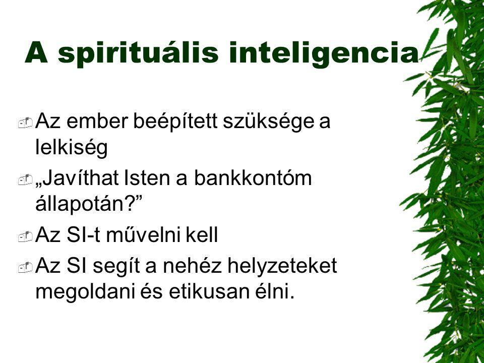 """A spirituális inteligencia  Az ember beépített szüksége a lelkiség  """"Javíthat Isten a bankkontóm állapotán?""""  Az SI-t művelni kell  Az SI segít a"""
