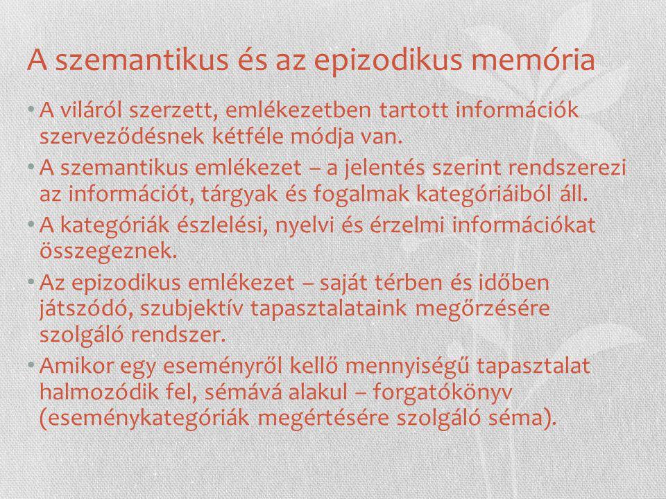 A szemantikus és az epizodikus memória A viláról szerzett, emlékezetben tartott információk szerveződésnek kétféle módja van.