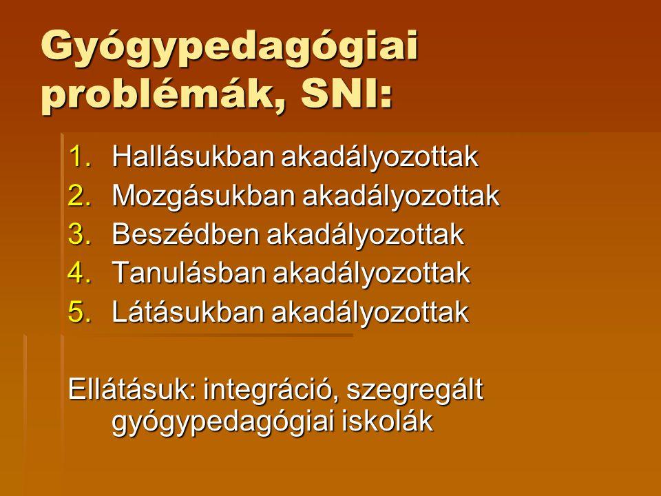 Gyógypedagógiai problémák, SNI: 1.Hallásukban akadályozottak 2.Mozgásukban akadályozottak 3.Beszédben akadályozottak 4.Tanulásban akadályozottak 5.Lát