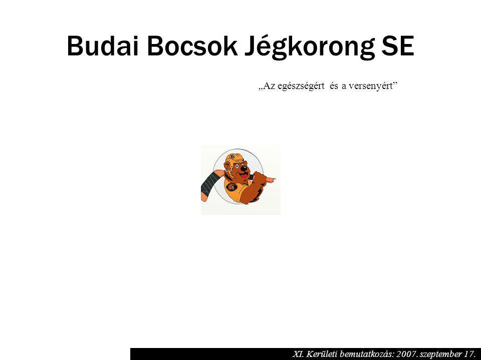 """"""" Az egészségért és a versenyért"""" Budai Bocsok Jégkorong SE XI. Kerületi bemutatkozás: 2007. szeptember 17."""