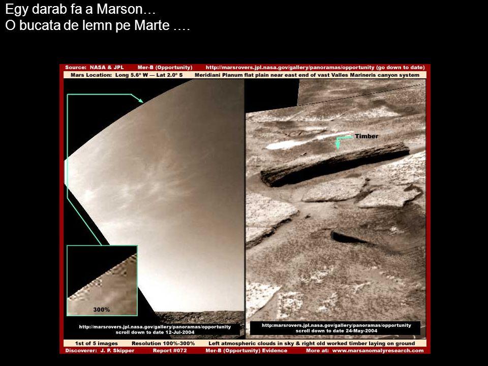 Egy darab fa a Marson… O bucata de lemn pe Marte ….