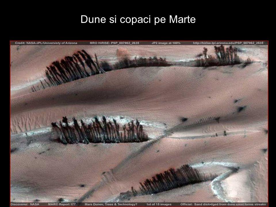 Dune si copaci pe Marte