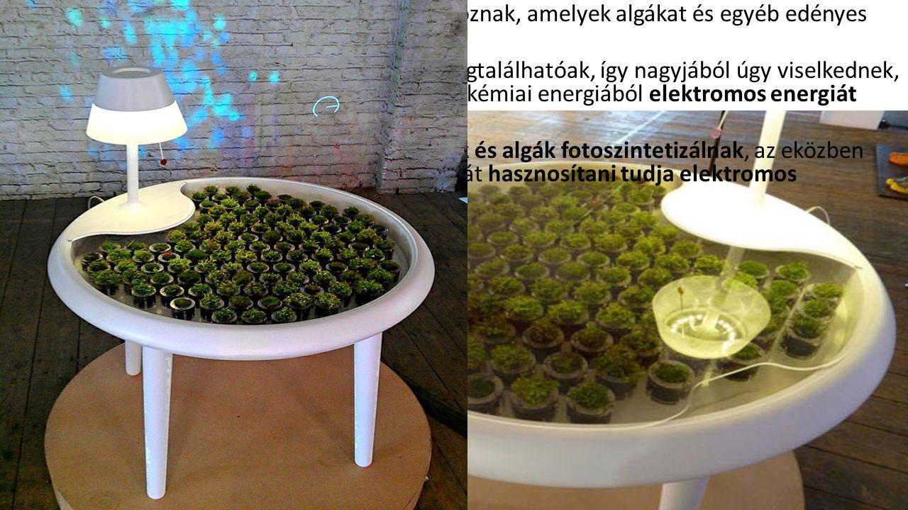 Az asztalfelületen kicsi mohacserepek sorakoznak, amelyek algákat és egyéb edényes növényeket is tartalmaznak. A cserepek alján elektródák és vezetők