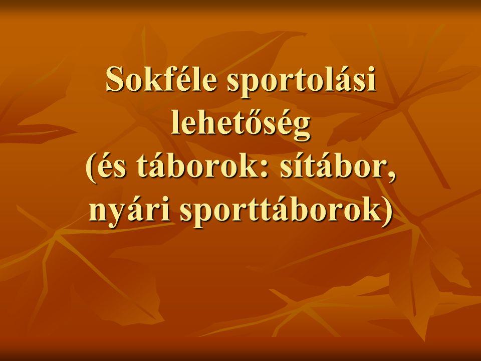 Sokféle sportolási lehetőség (és táborok: sítábor, nyári sporttáborok)