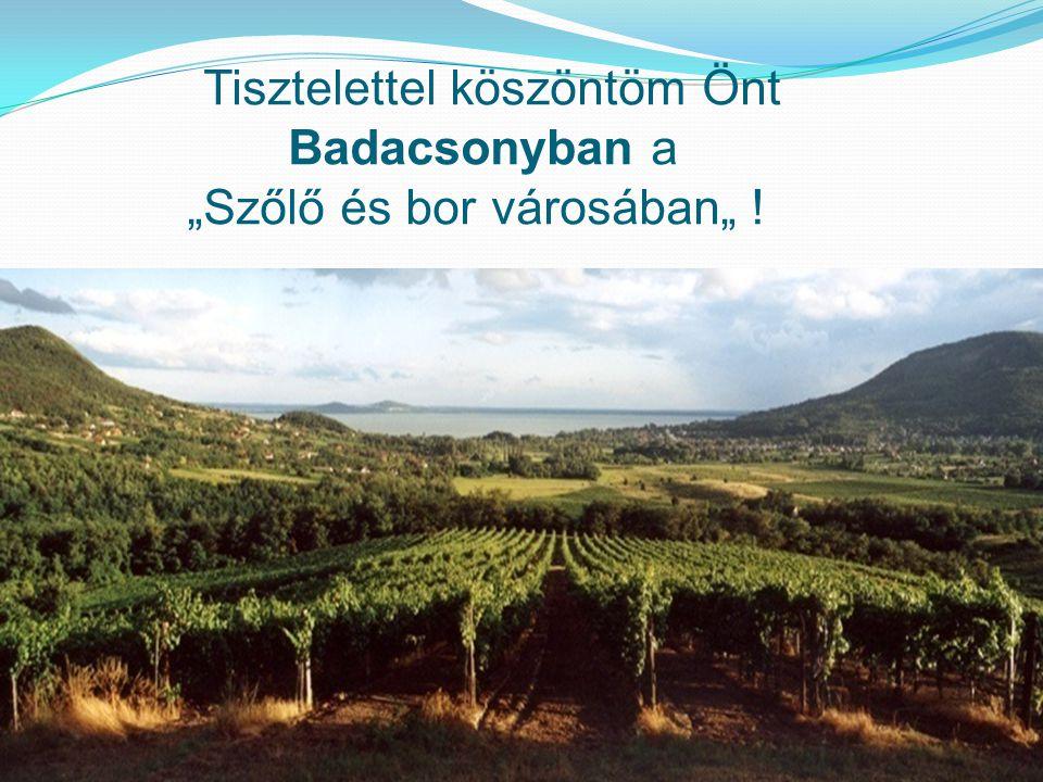 """Tisztelettel köszöntöm Önt Badacsonyban a """"Szőlő és bor városában"""" !"""