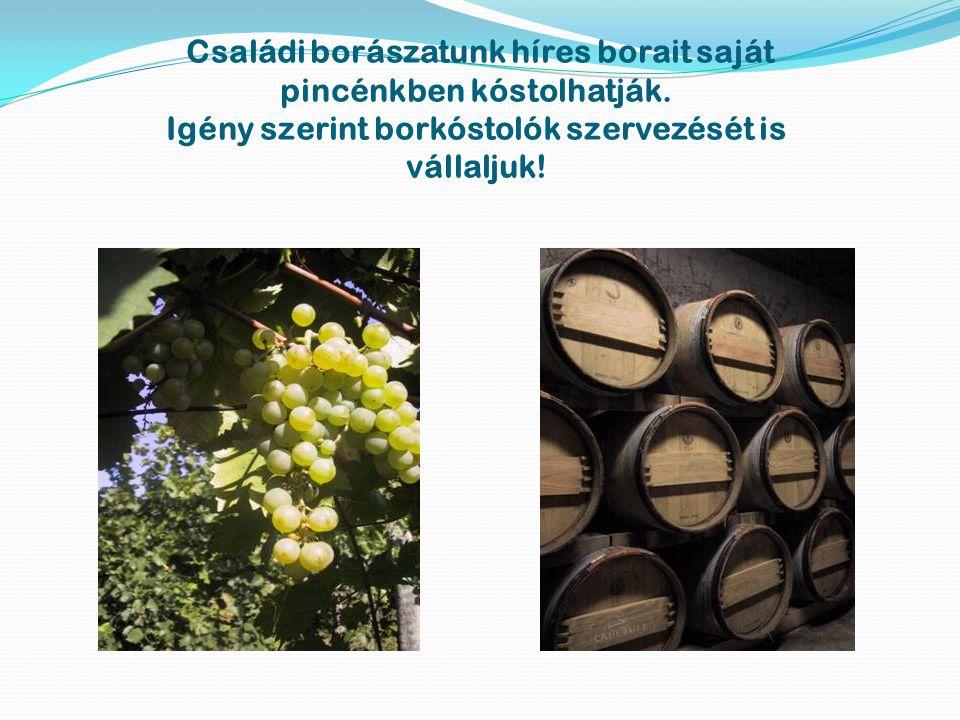 Családi borászatunk híres borait saját pincénkben kóstolhatják. Igény szerint borkóstolók szervezését is vállaljuk!