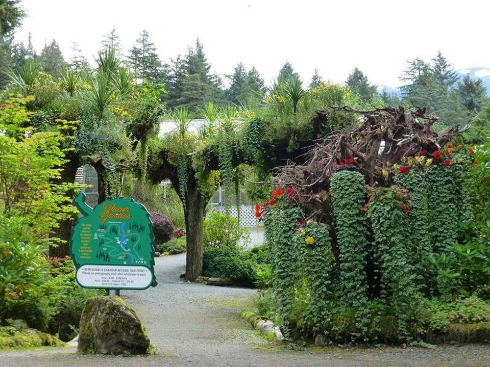 Az alaszkai Botanikus kert az 50 hektáros alaszkai Panhandle gyönyörű erdejét foglalja magába, ami Juneauban található.