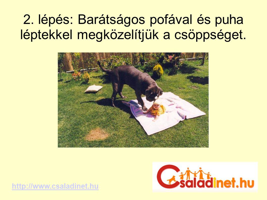 2. lépés: Barátságos pofával és puha léptekkel megközelítjük a csöppséget. http://www.csaladinet.hu