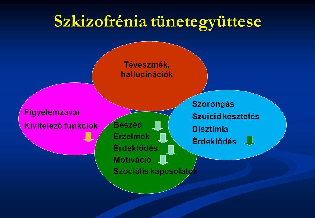 Szkizofrénia tünetegyüttese Téveszmék, hallucinációk Beszéd Érzelmek Érdeklődés Motiváció Szociális kapcsolatok Szorongás Szuicid késztetés Disztímia