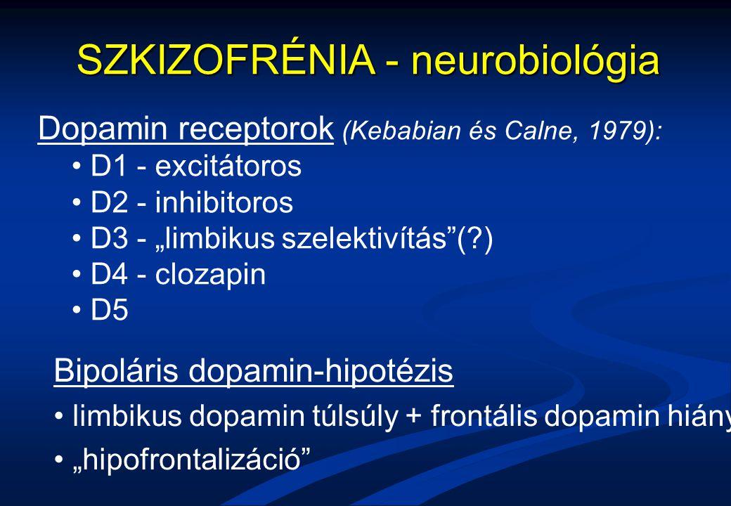"""SZKIZOFRÉNIA - neurobiológia Bipoláris dopamin-hipotézis limbikus dopamin túlsúly + frontális dopamin hiány """"hipofrontalizáció"""" Dopamin receptorok (Ke"""