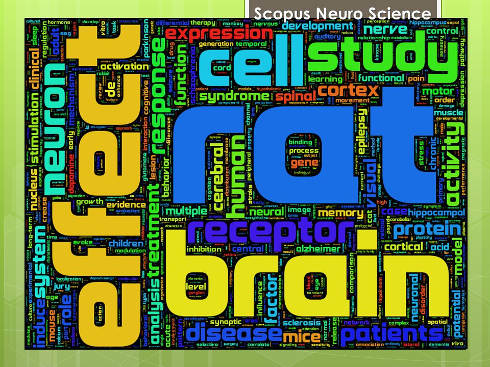 Scopus Neuro Science