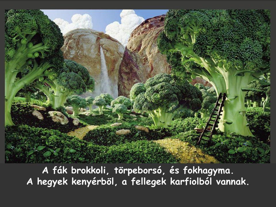 A fák brokkoli, törpeborsó, és fokhagyma. A hegyek kenyérböl, a fellegek karfiolból vannak.