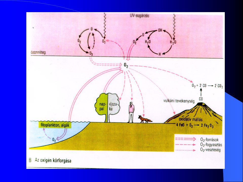 Kisebb jelentőségű A A nitrogén körforgása