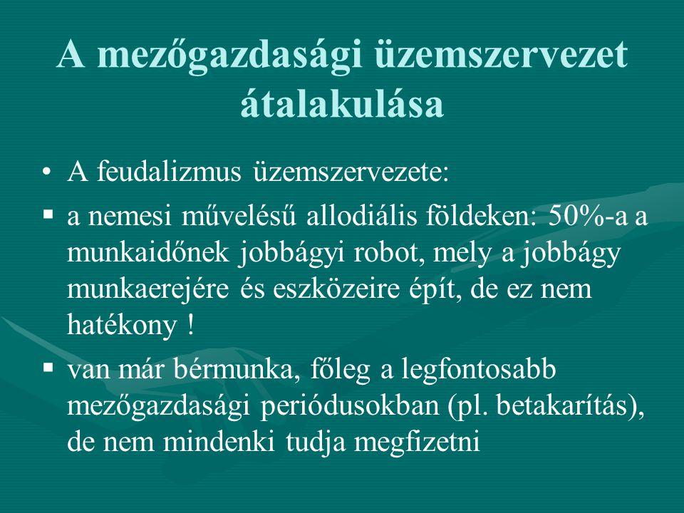 A mezőgazdasági üzemszervezet átalakulása A feudalizmus üzemszervezete:   a nemesi művelésű allodiális földeken: 50%-a a munkaidőnek jobbágyi robot,
