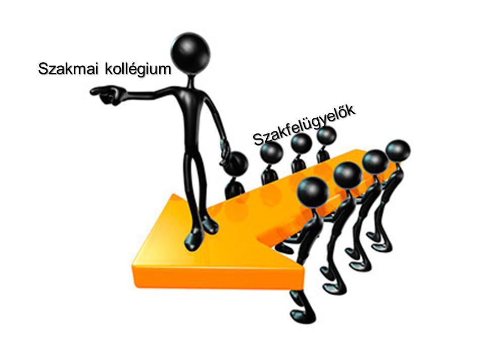 A szakfelügyelet feladatai 1.TERVEZETT helyszíni ellenőrzések 2.Éves szakmai adatgyűjtések 3.Szakmai auditok megvalósítása Betegbiztonság